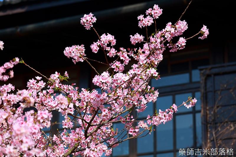 Hsinchu_160301_0722.jpg