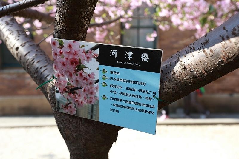 Hsinchu_160301_0761.jpg