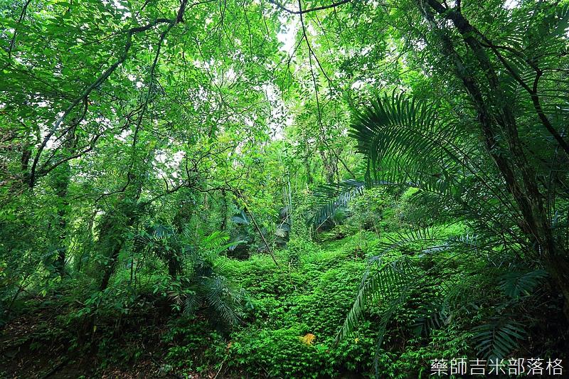 Taipower_352.jpg