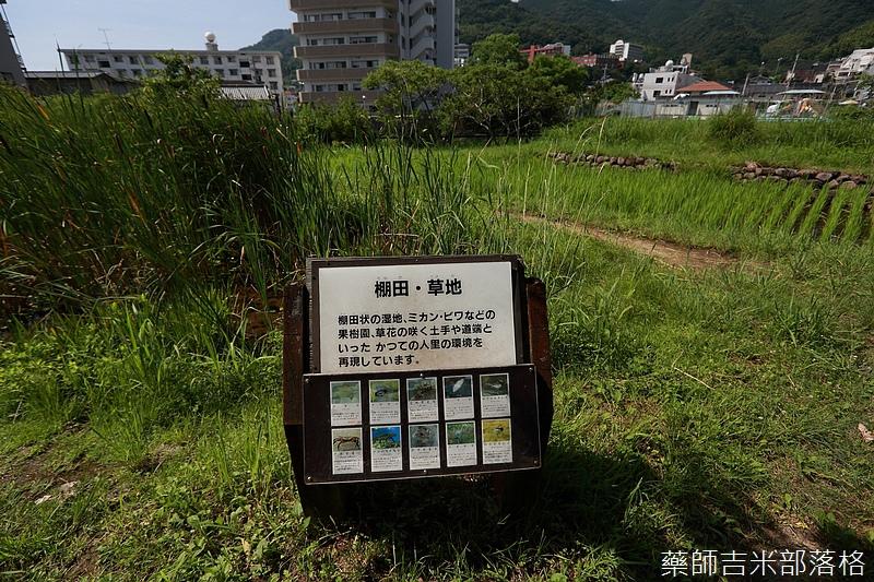 Kyushu_160721_0130.jpg