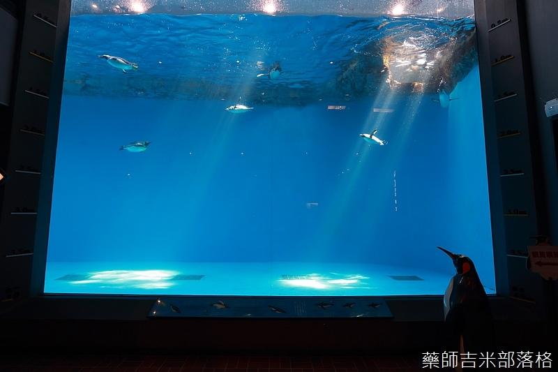 Kyushu_160721_0173.jpg