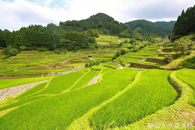Kyushu_160720_1183.jpg