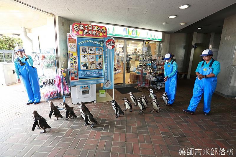 Kyushu_160721_0303.jpg