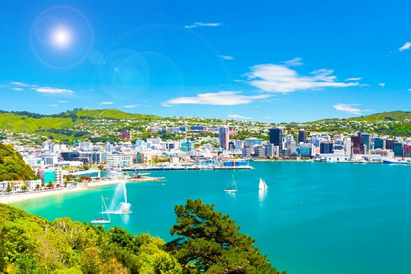 Wellington 威靈頓.jpg