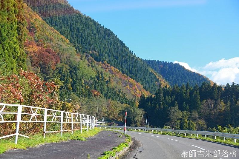 Akita_161102_0110.jpg