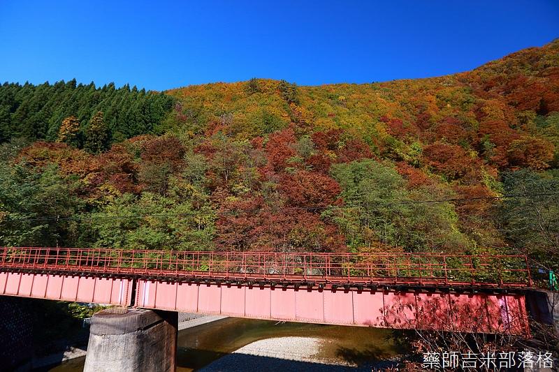 Akita_161102_0121.jpg