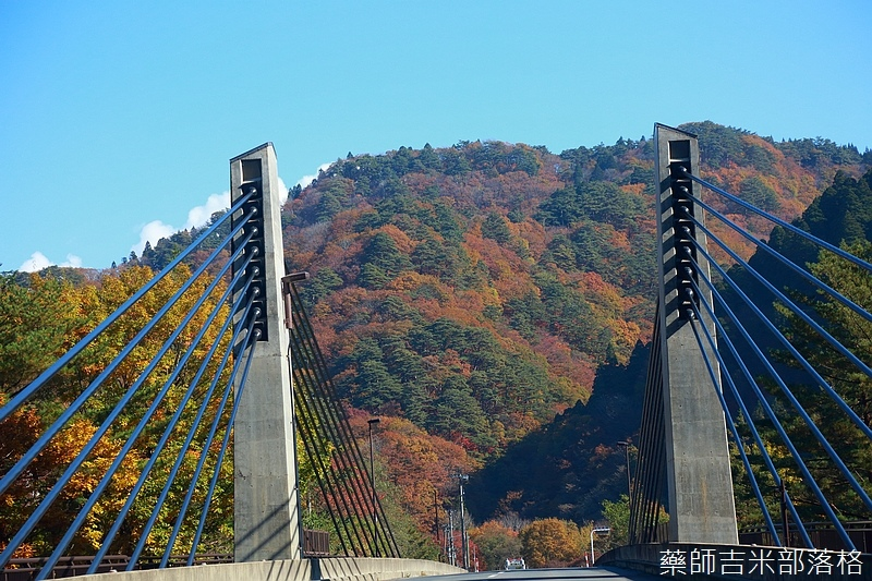 Akita_161102_0132.jpg