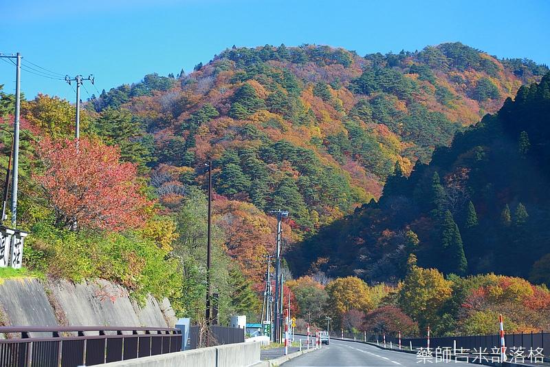 Akita_161102_0135.jpg