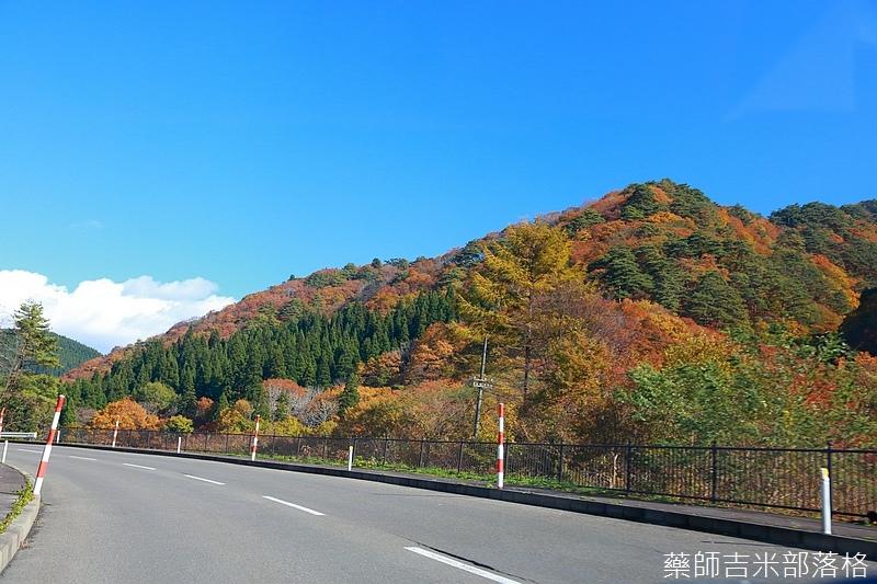Akita_161102_0138.jpg