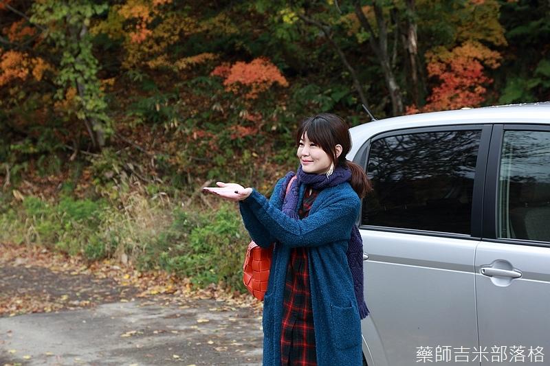 Akita_161104_0075.jpg