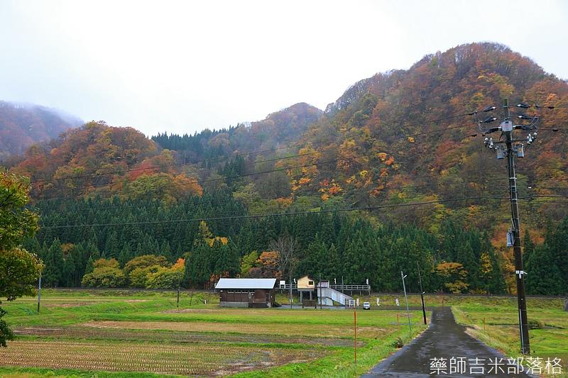 Akita_161103_0143.jpg