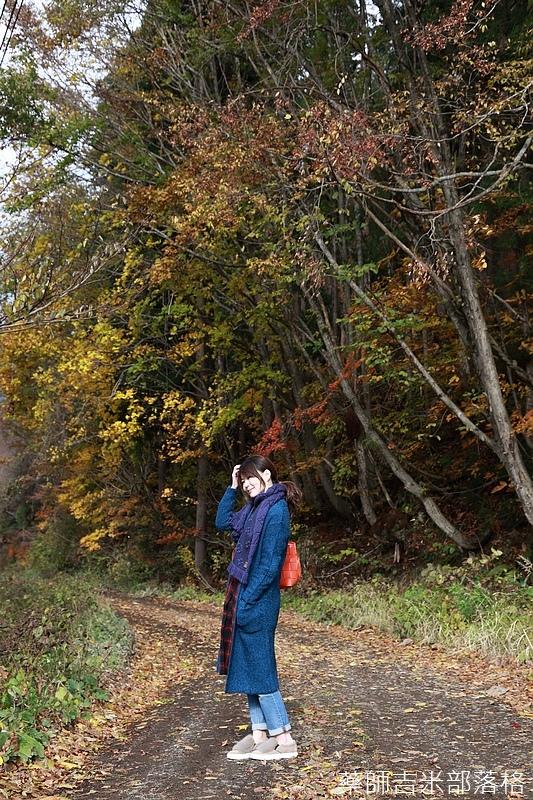 Akita_161104_0125.jpg