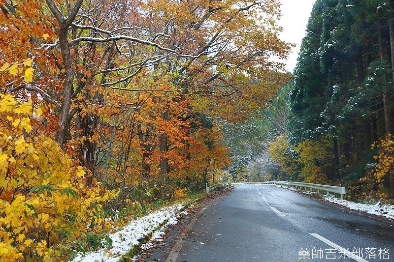 Akita_161102_0207.jpg