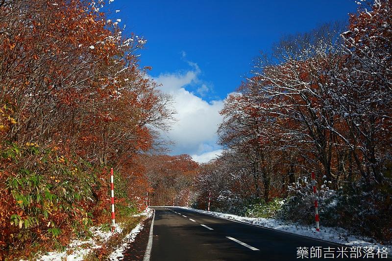 Akita_161102_0208.jpg