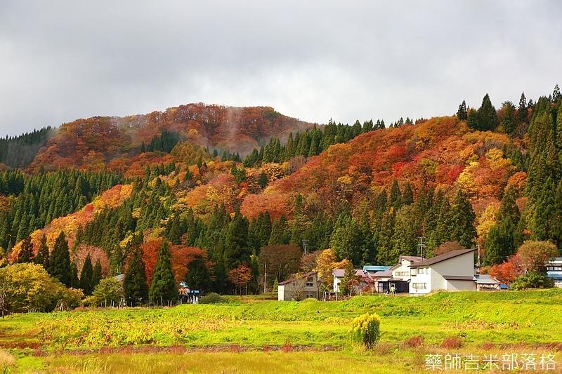 Akita_161103_0234.jpg