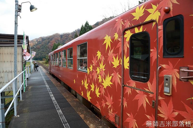 Akita_161103_0278.jpg