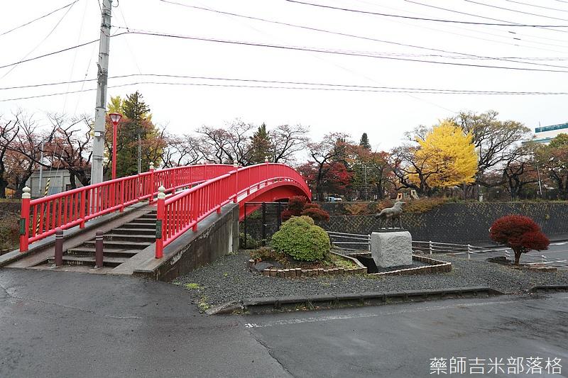 Akita_161101_0379.jpg