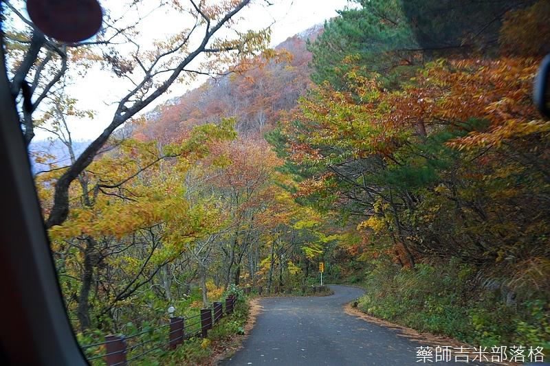 Akita_161104_0307.jpg