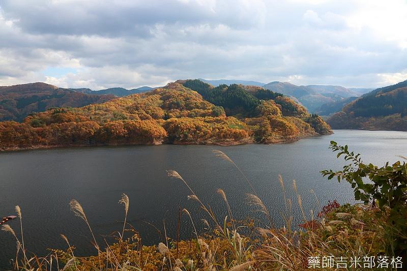 Akita_161104_0332.jpg