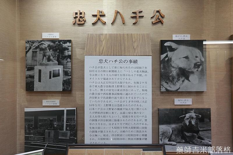 Akita_161101_0476.jpg