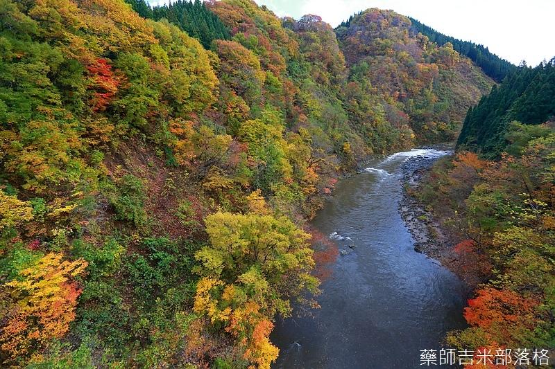 Akita_161103_0383.jpg
