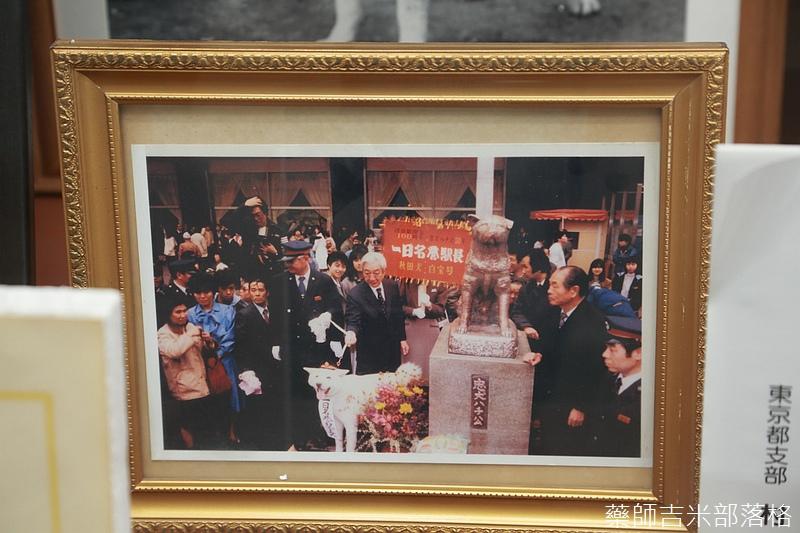 Akita_161101_0486.jpg