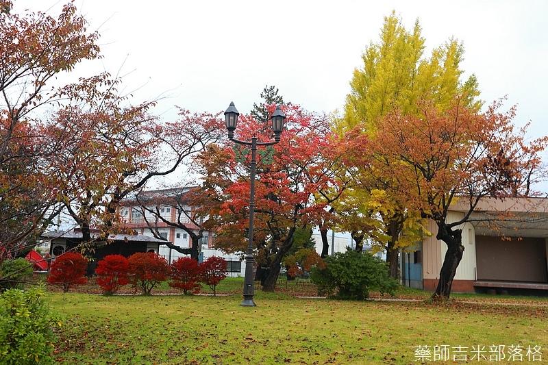 Akita_161101_0562.jpg