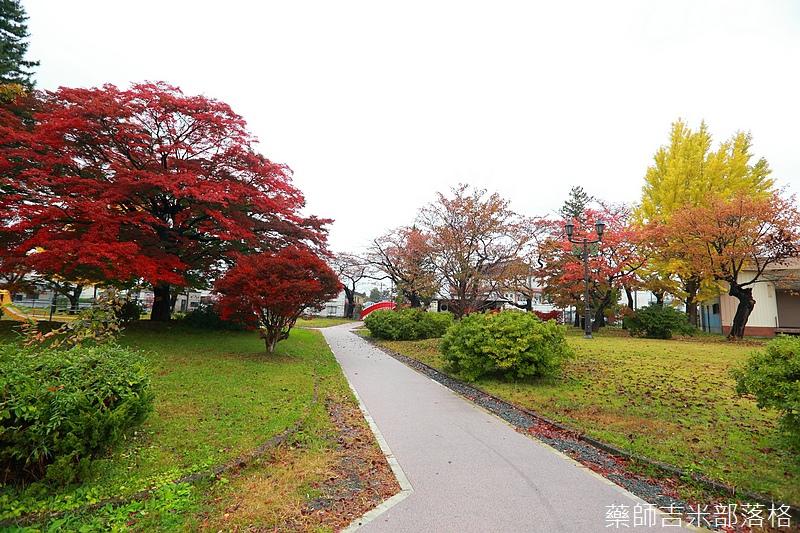 Akita_161101_0563.jpg