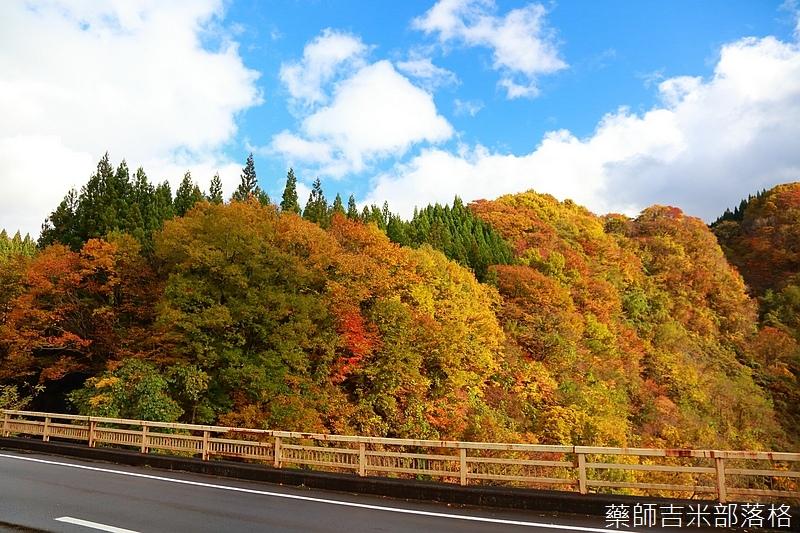 Akita_161103_0475.jpg
