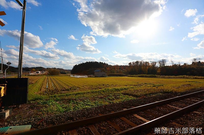Akita_161104_0451.jpg