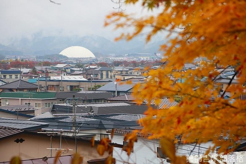 Akita_161101_0579.jpg