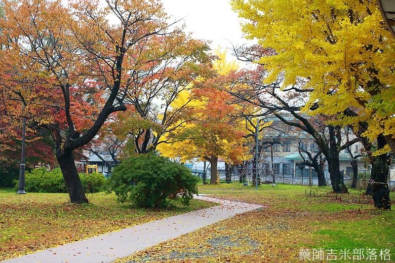 Akita_161101_0584.jpg