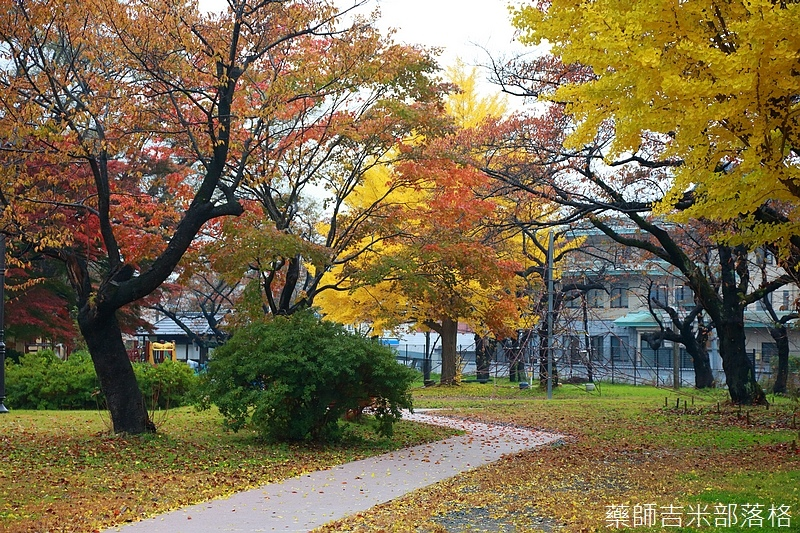 Akita_161101_0585.jpg