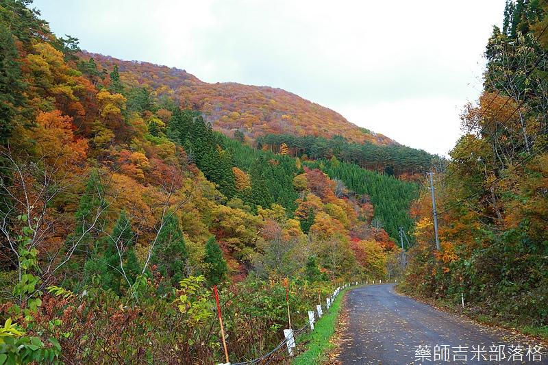 Akita_161103_0548.jpg