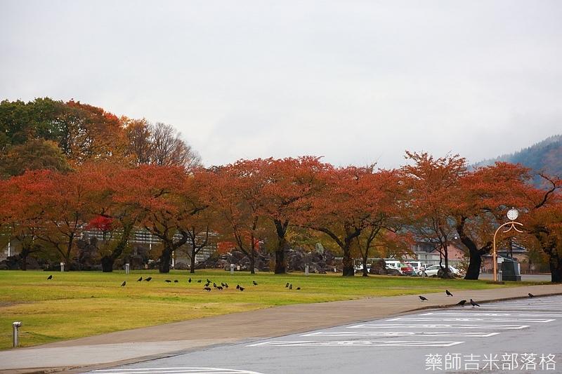 Akita_161101_0769.jpg