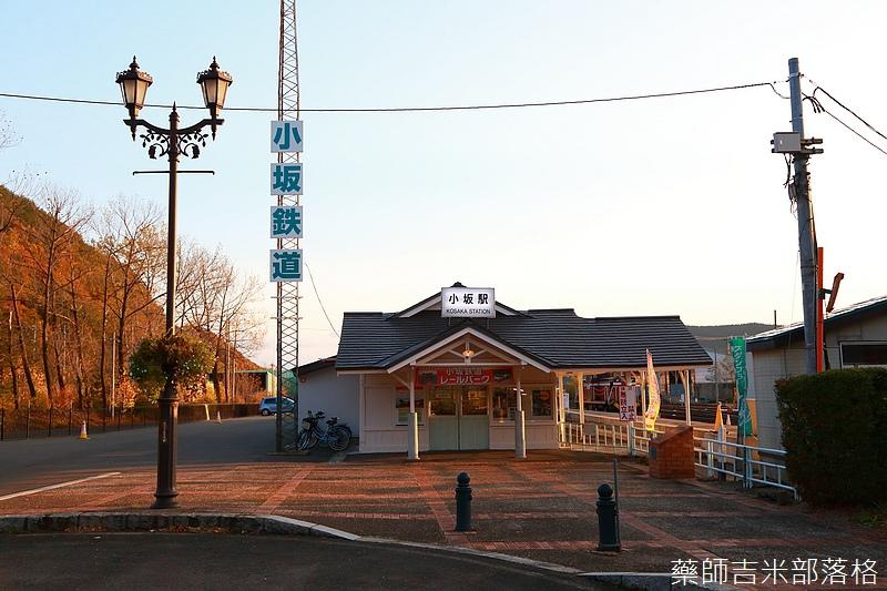 Akita_161104_0708.jpg