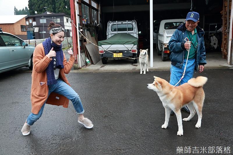 Akita_161101_0817.jpg