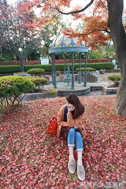 Akita_161102_1003.jpg