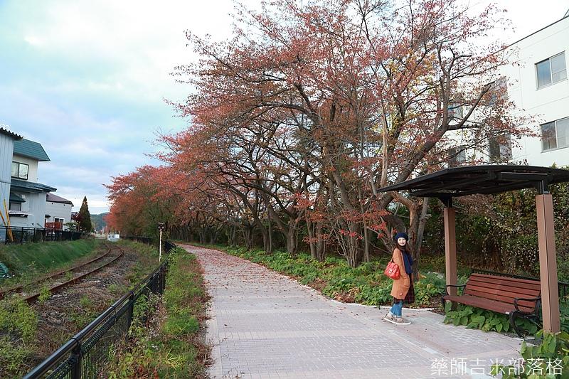 Akita_161102_1033.jpg