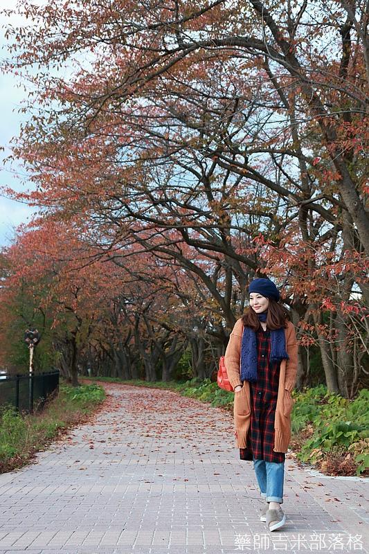 Akita_161102_1045.jpg