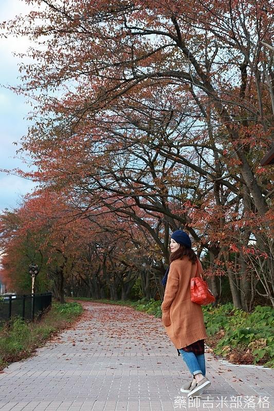 Akita_161102_1048.jpg