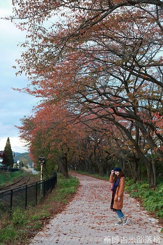 Akita_161102_1058.jpg