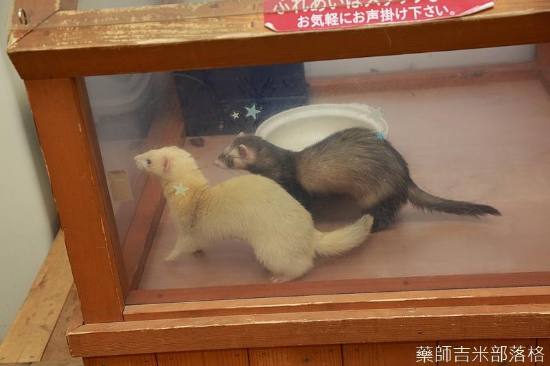 Kyushu_161108_094.jpg