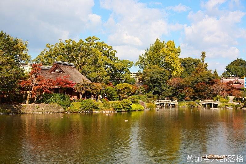 Kyushu_161109_195.jpg