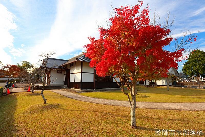 Kyushu_161109_471.jpg