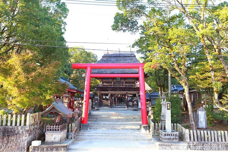 Kyushu_161109_517.jpg