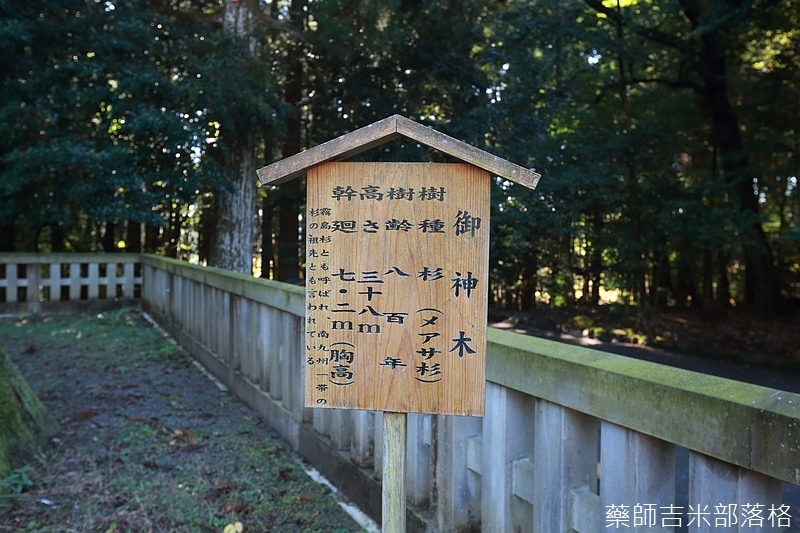 Kyushu_161111_086.jpg