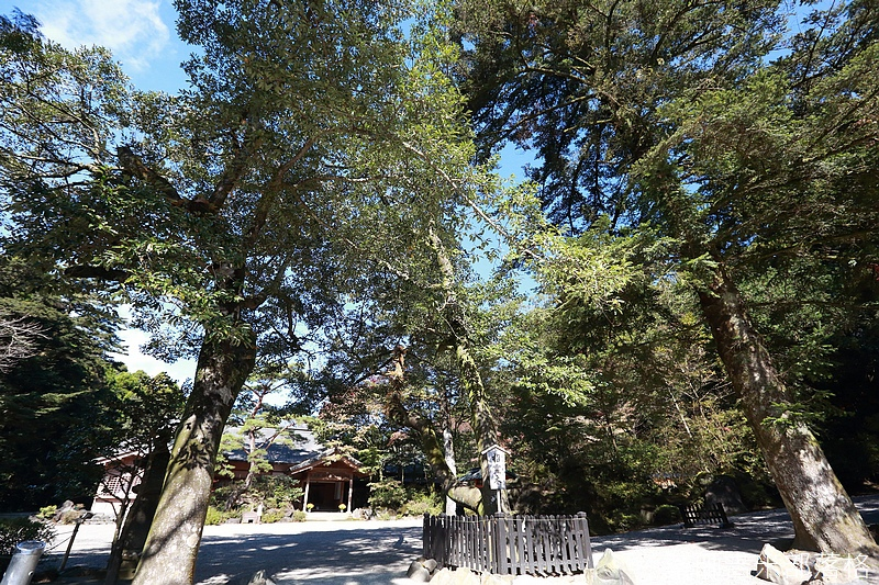 Kyushu_161111_185.jpg