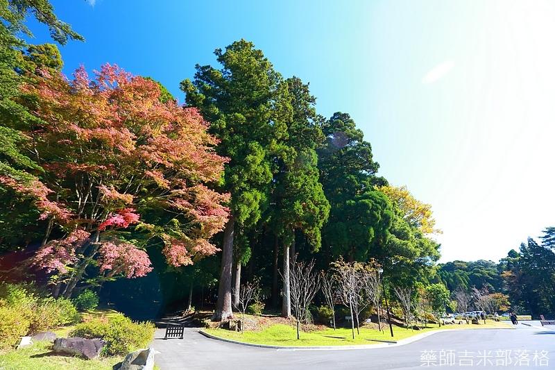 Kyushu_161111_187.jpg