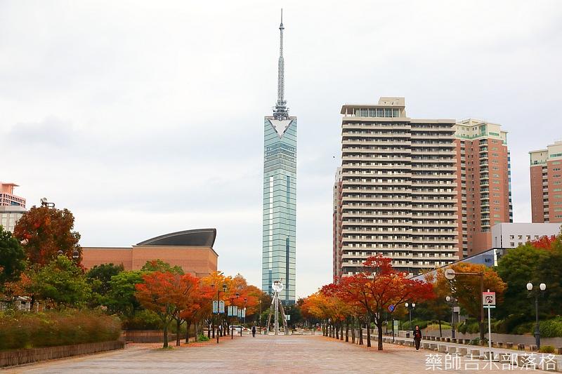Kyushu_161114_144.jpg